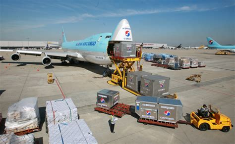 halifax sees massive increase  air capacity  china