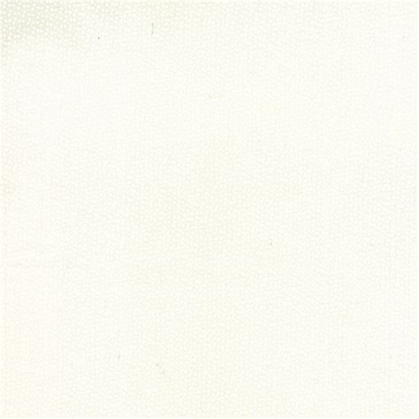 behr creamy white behr creamy white wedding veil loveisabella miss kate