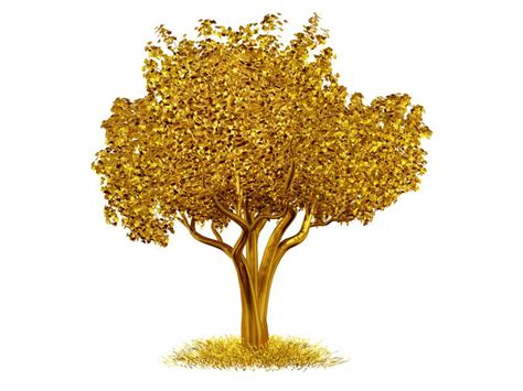can trees tell us where gold is buried tales by trees