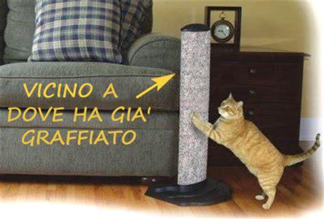 repellente per gatti divano repellente per gatti divano idea di casa