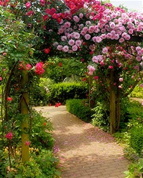 Chicago Botanic Garden Membership Garden Ftempo Chicago Botanic Garden Membership