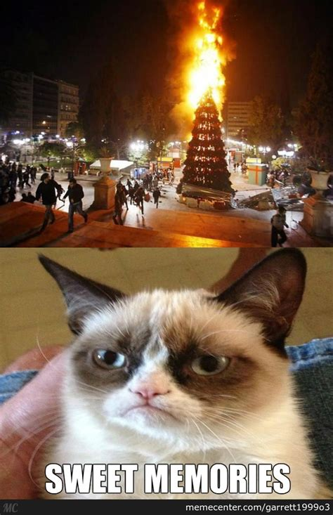 grumpy cat s favorite christmas tradition by garrett1999o3