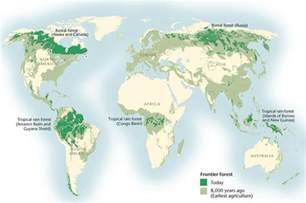 boreal forest boreal songbird initiative