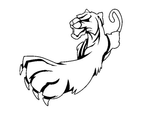 dibujo de garra de pantera para colorear dibujos net