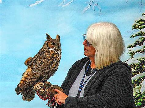 owl be home for christmas fundraiser set for saturday in