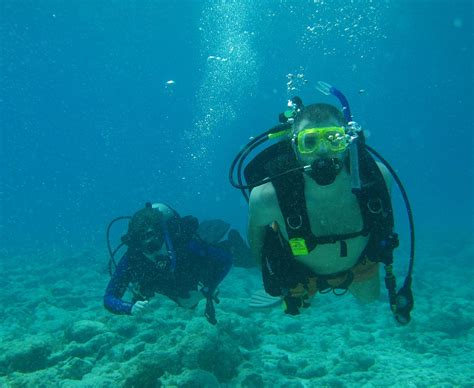 dive meaning recreational diving