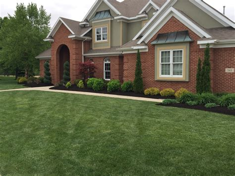 curb appeal lawn care landscaping curb appeal landscape lawncare