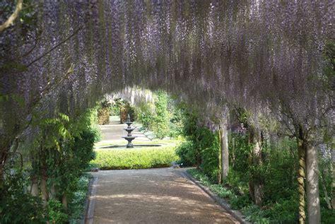 Garden Arch Geelong Alowyn Gardens Go Beyond Melbourne