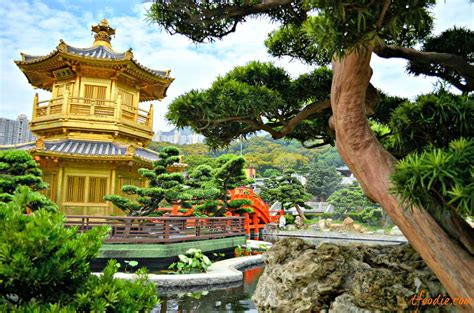 Garden Hong Kong by The Traveling Foodie Chi Nunnery Nan Lian Gardens