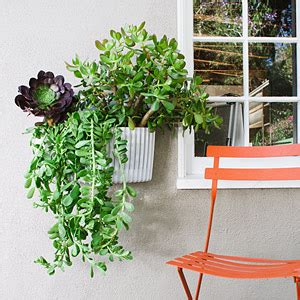 woolly wall planters for a vertical garden