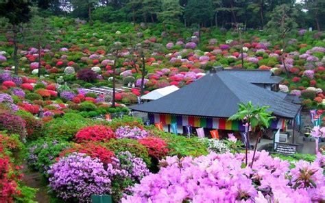 Garden Of Definition Japanese Garden Wallpapers For Desktop In Hd Auto Design