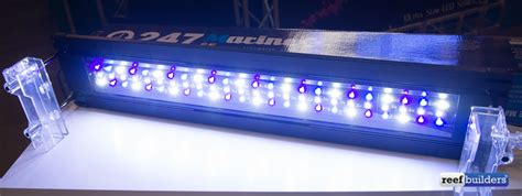 Finnex Lights by New 24 7 Led Striplight From Finnex Aquatic Experience
