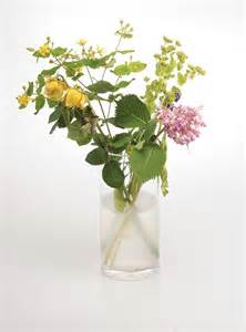 plant food for cut flowers keep flowers fresh by treating them to vodka