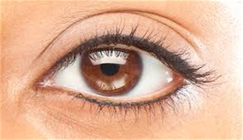 tattoo eyeliner malaysia image result for semi permanent eyeliner pinteres
