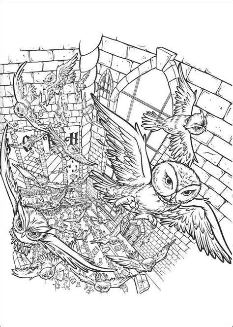 harry potter owl coloring pages kids coloring outline owl