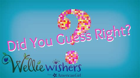 Did You Guess Right by Did You Guess Right Wellie Wishers Doll