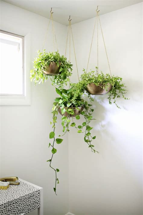 diy recycled decoration idea for hang on ceiling easy hanging planter diy a beautiful mess