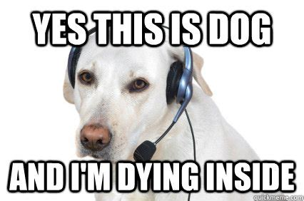 Dying Memes - yes this is dog and i m dying inside telemarketer dog