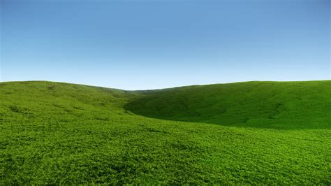The Field grass field pictures hd wallpapers pulse