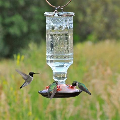 perky pet 24 oz clear glass antique bottle hummingbird feeder