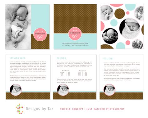 prophoto4 templates adorable trifold design 187 designs by taz identity and
