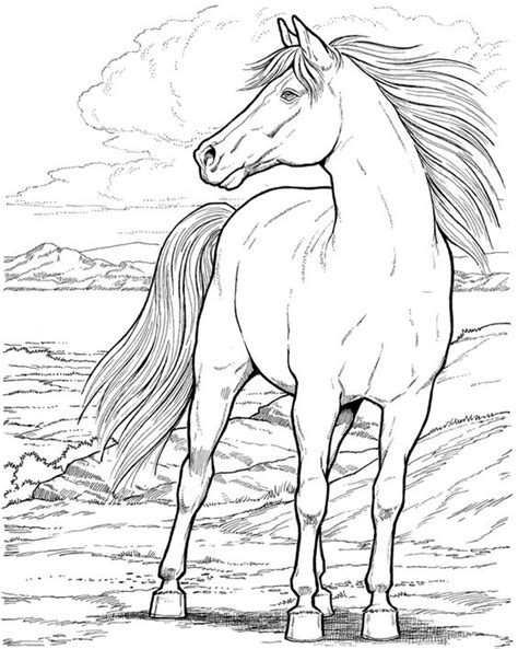 herd of horses coloring pages dibujos de caballos para colorear e imprimir gratis
