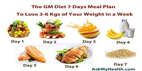 diet meal plan to lose weight fast tips and tricks