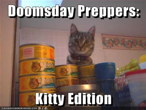 Doomsday Preppers Meme - doomsday prepper kitty edition the most adorable