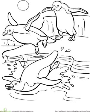 preschool coloring pages penguins penguin worksheet education com