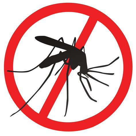 china scales back anti mosquito treatment requirements for u s exports scarbrough international