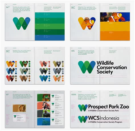 what do different colours mean brand new new logo and identity for wildlife conservation