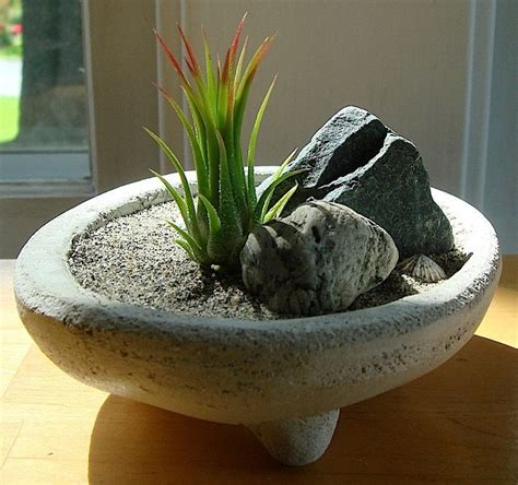 mini zen rock garden designs of mini zen garden home landscaping