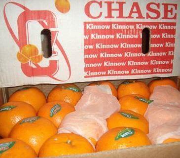 Somer Ville Jeruk Baby Buah 2 Kg kebun jeruk keprok mei 2012