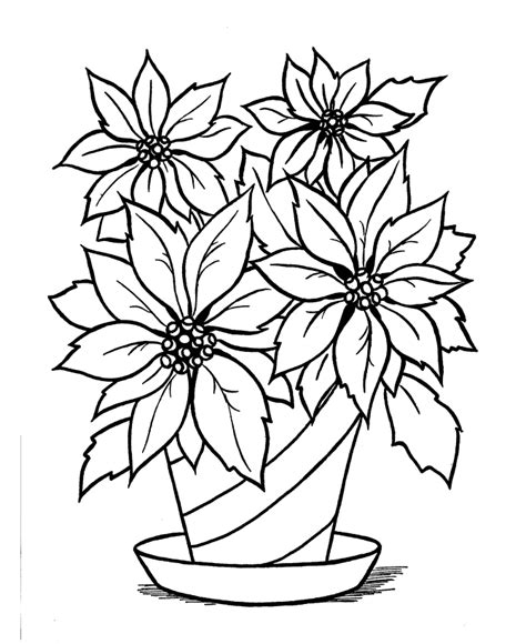 poinsettia coloring page az coloring pages