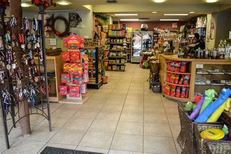 chicago puppy store pet stores in chicago for leashes cat collars and more