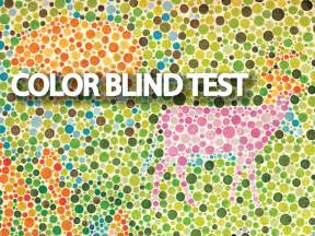 child color blind test color blind tests collection hd bluewizardapp