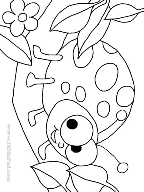 ladybug coloring pages to and print for free