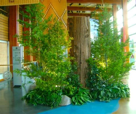 West Coast Decorating Style by West Coast Tree Backdrops And Decor Greenscape Design