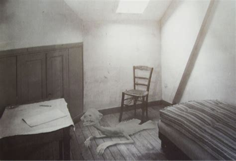white house secret rooms for decades secret room in whitehouse attic reveals the mummified remains of woodrow