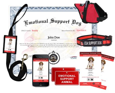 how to a service for emotional support emotional support deluxe kit 187 us registry