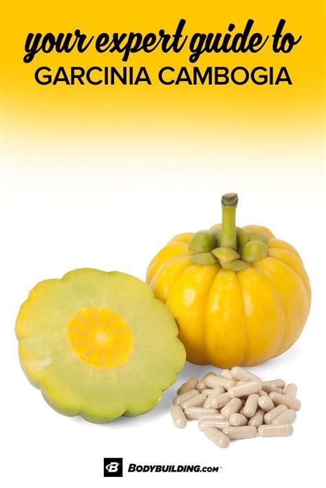 Fruit Expert Hessayon by Presentation Specialist Sle Resume Sle Resumes For Bartenders