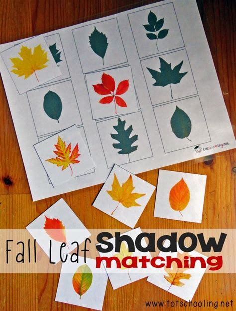 printable preschool fall activities fall leaf shadow matching fall leaves free printable