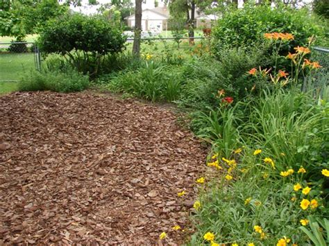 here s how to apply mulch to your garden the right way better housekeeper