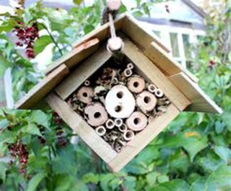 Ladybug House Plans 1000 Images About Bug Box Plans On Insect Hotel Ladybug House And Bee House