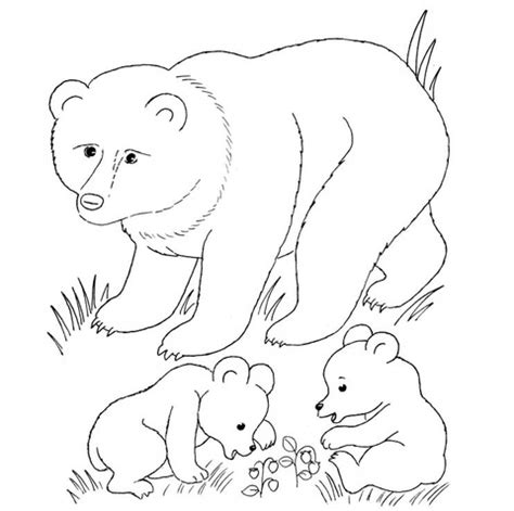 bear mother and bear cubs coloring page supercoloring com