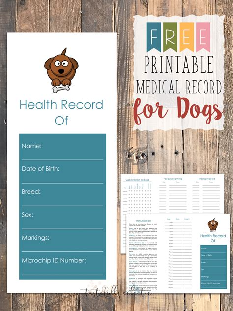 puppy health puppy health record book printable dogs in our photo