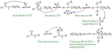 diff b w hydration and hydrolysis chem 353 w 2015 mechanism