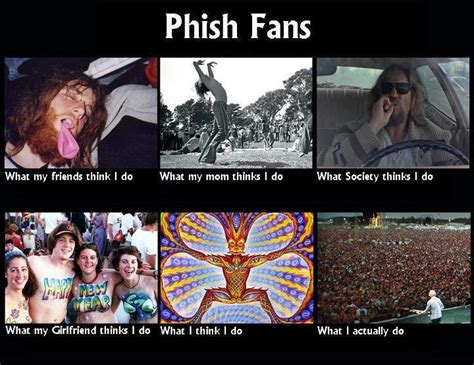 Phish Memes - phish fans what we do phish pinterest