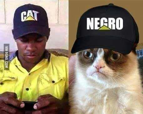Negro Meme - cat gt negro 9gag
