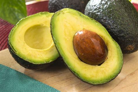 healthy fats avocado avocado healthy fats merlo farming